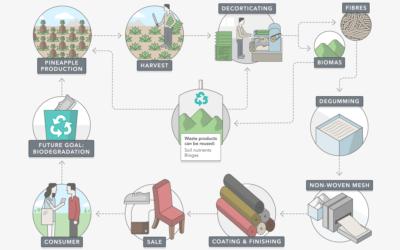 Piñatex, la alternativa ecológica al cuero